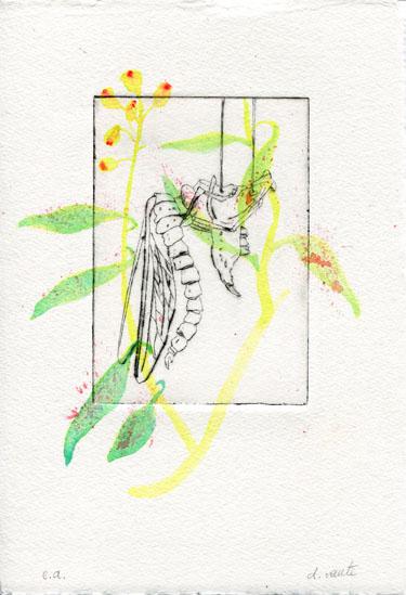 Les Botaniques 01