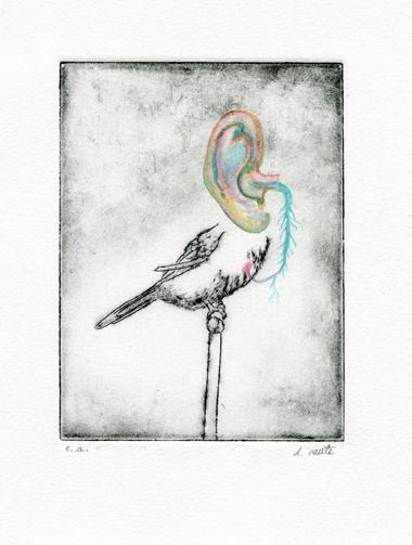 Birds of everyday #1 D Vaute