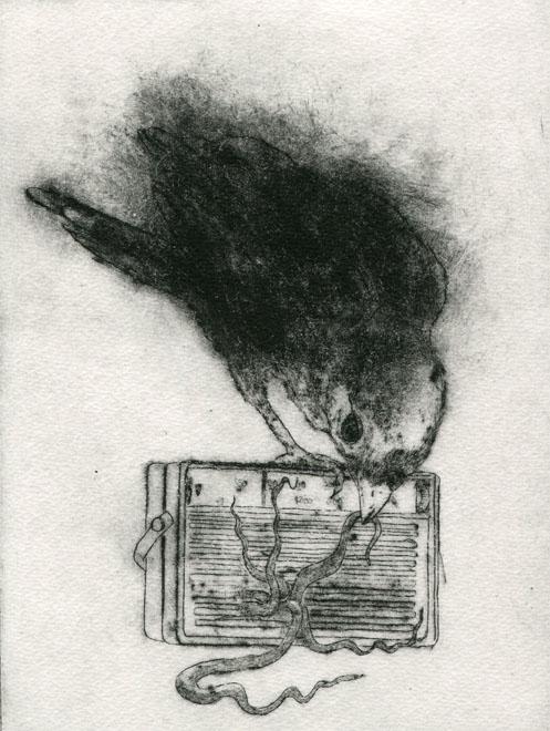 Transistor D. Vaute