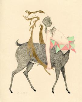 King's deer 2013