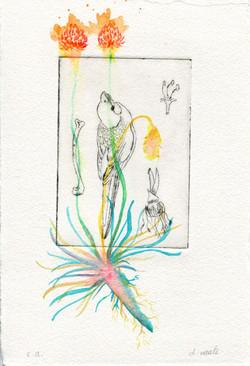 Les Botaniques 03