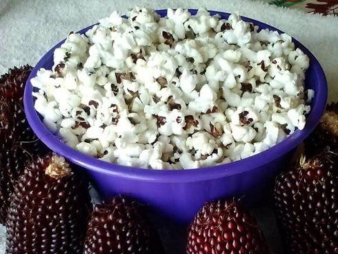 popcorn%20pop_edited.jpg