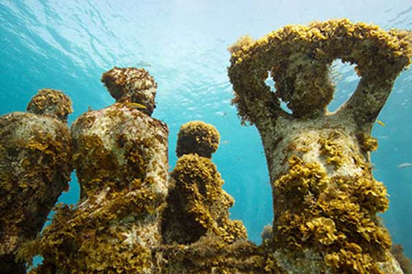 MUSA is an innovative project designed to counteract the effects of climate change on our oceans and reef systems. The sculptures change overtime, as coral grows and marine life establishes itself.