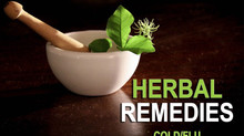 Herbal Remedies-Colds/Flu