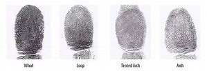 Fingerprints: A Road Map of Your Early Development