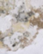 mold 2.jpg