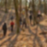 Maandelijkse wandeling in Duinengordel
