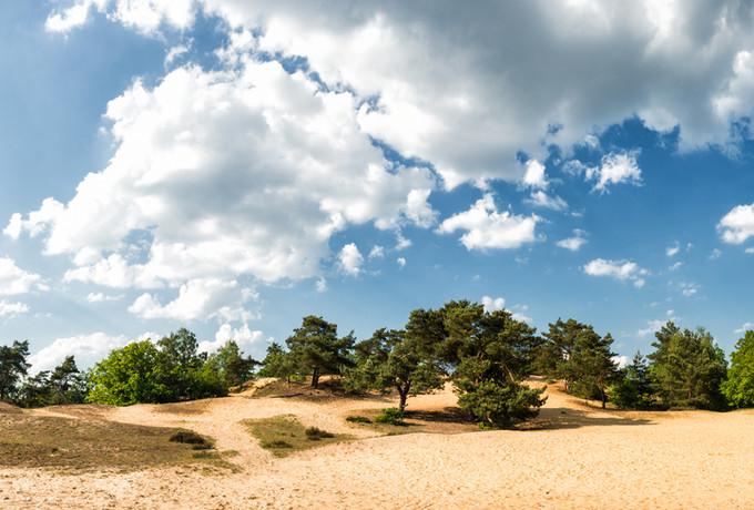 Panorama Oudsberg - Duinengordel