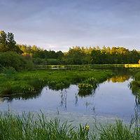 In de buurt van Duinengordl: Grenspark Kempen~Broek