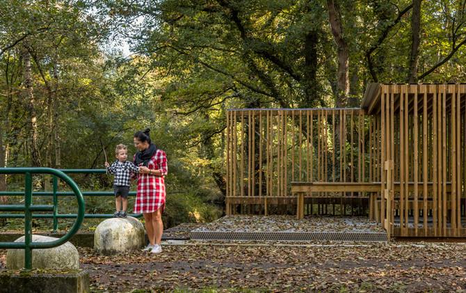 Picknickplek bij de Bosbeek