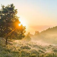In de buurt van Duinengordl: Nationaal Park Hoge Kempen