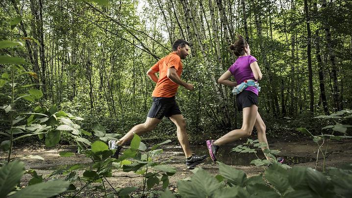 Joggen in het bos.jpg