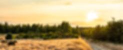 Zonsondergang Donderslag Duinengordel