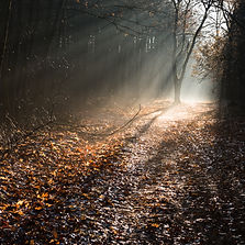 11_©KrisThijs_131213oudsberg021.jpg