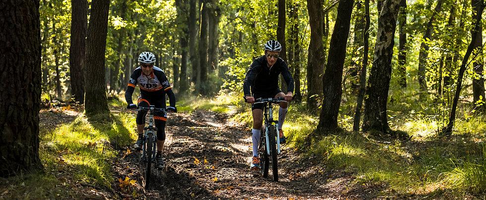 Duinengordel: Limburgs mountainbikemekka