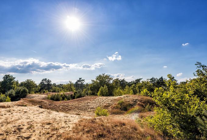 Duinenlandschap Oudsberg - Duinengordel