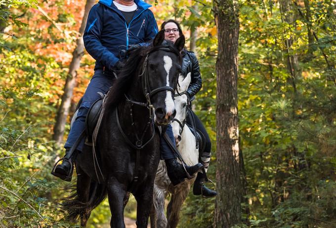 Paardrijden Duinengordel