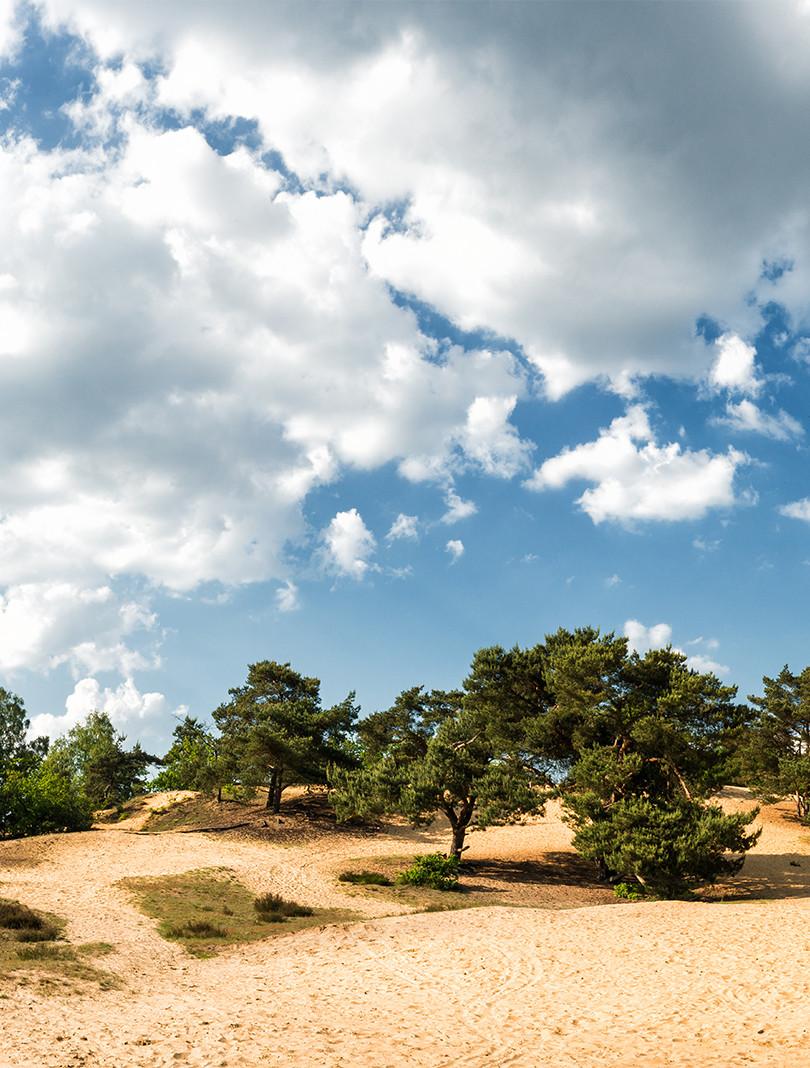 ©KrisThijs_Oudsberg_panorama_KL.jpg