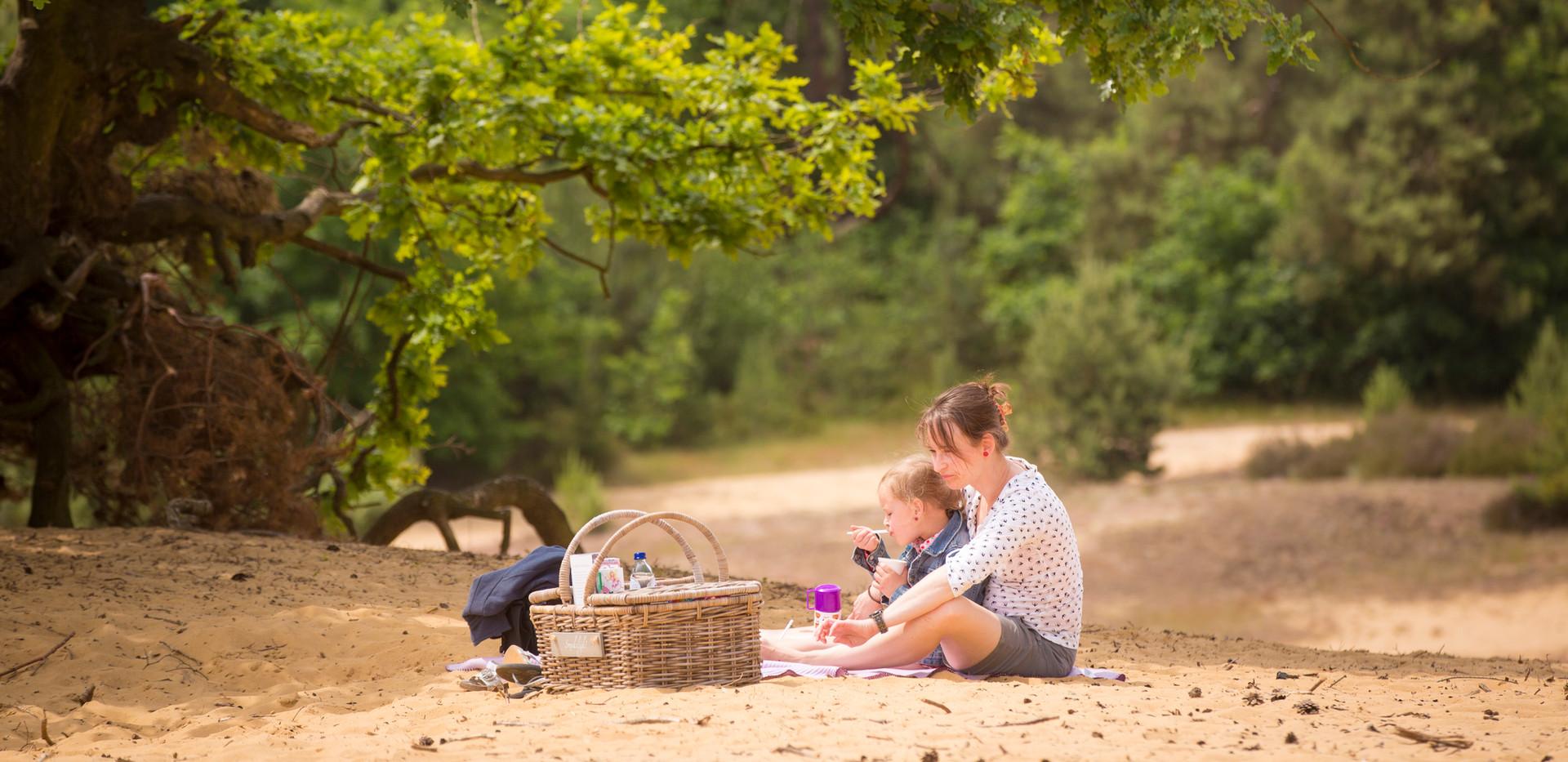 Picknicken op de Oudsberg