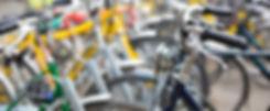 Duinengordel fietsverhuur