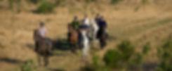 Paardrijden over 42 km bewegwijzerde paden