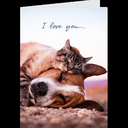 I Love You Greeting Card Pack - #3