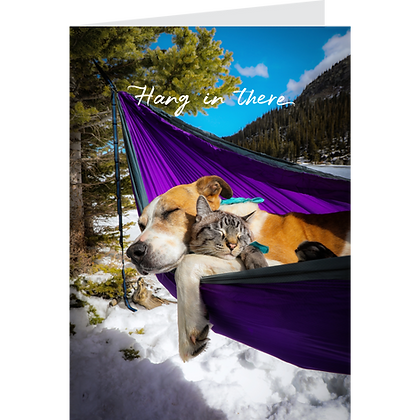 Hang in There Greeting Card Pack