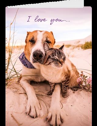 I Love You Greeting Card Pack - #1