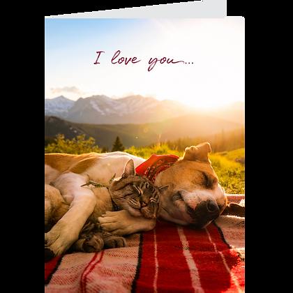 I Love You Greeting Card Pack - #2