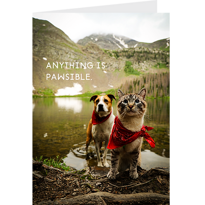 Anything is Pawsible Greeting Card