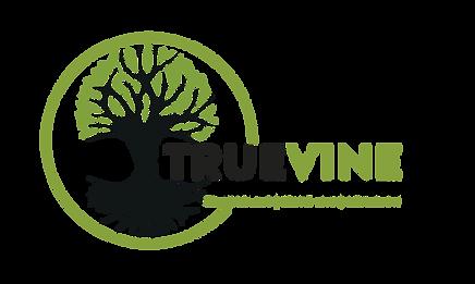 2020 TV Logo copy.png