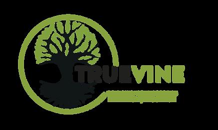 2020 TV Logo.png