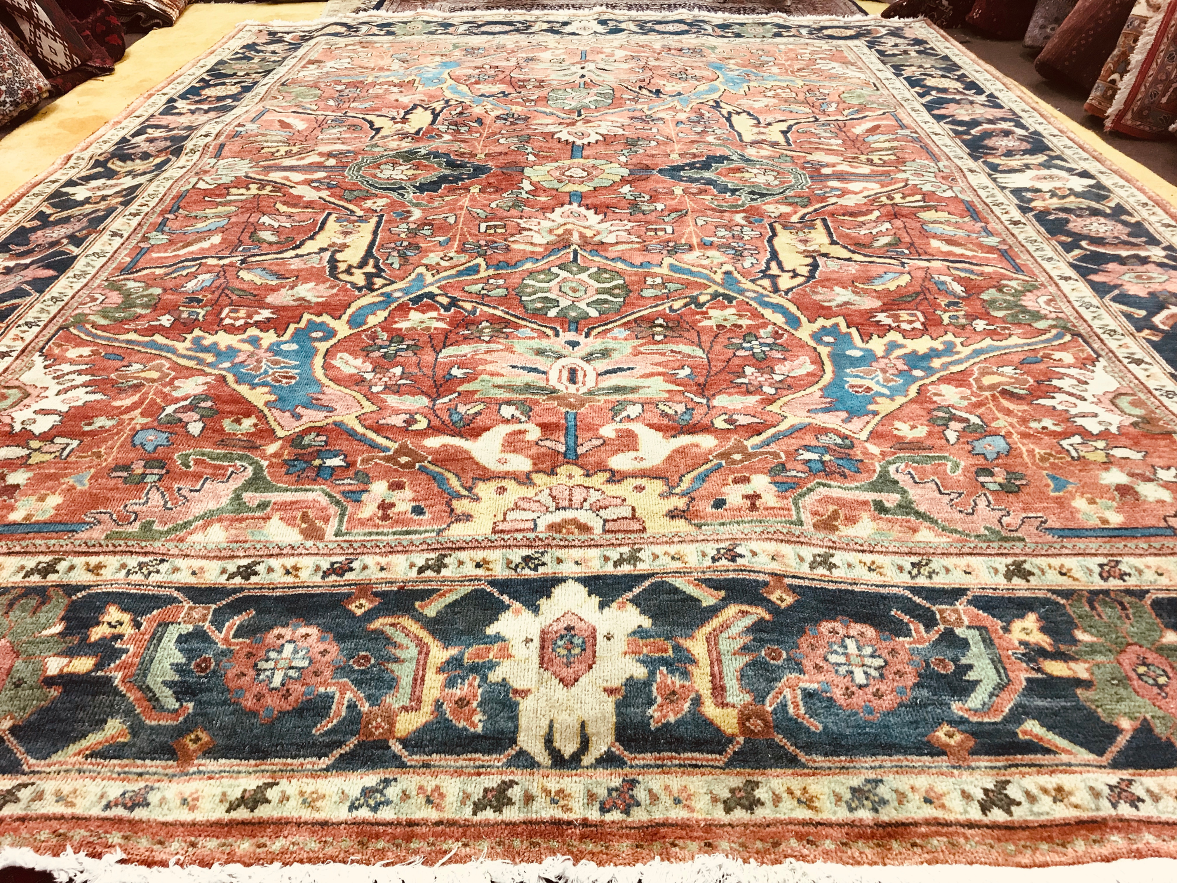 Rug Outlet Bay Area Rugs
