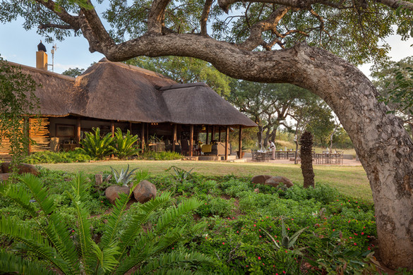 Thornybush Jackalberry Lodge South Afric