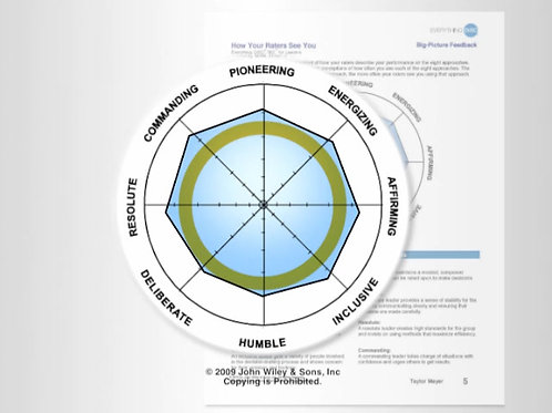 Everything DiSC 363 for Leaders Assessment and Profile