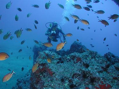 portugal-diving-billionsluxuryportal.jpg
