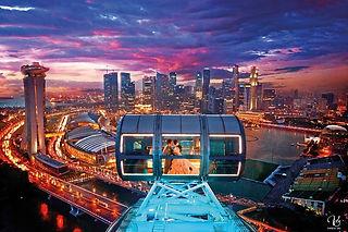 singapre flyer.jpg