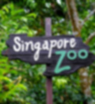 singapore zoo 2.jpg