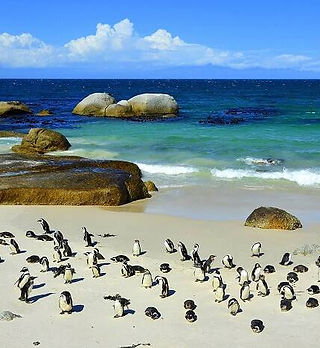 boulders-beach-billionsluxuryportal.jpg