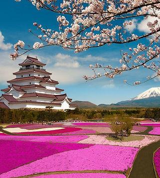 Best-Time-to-Visit-Japan-Spring-1024x768