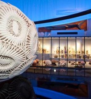 musee-oceanographique-de-monaco_billions