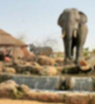 dubai-safari_billionsluxuryportal.jpg