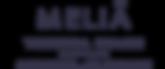 tortuga-beach-logo.png