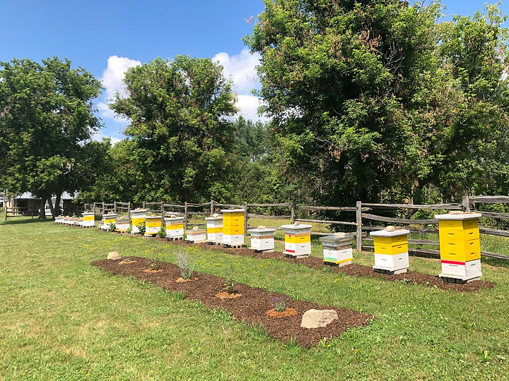 Fabulous Acres Apiary