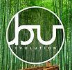bamboo 22.jpg