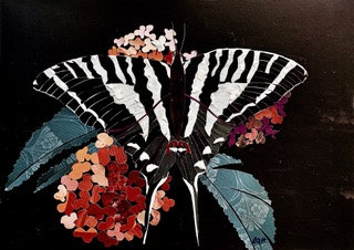 Zebra Butterfly (limited edition) - NEW!
