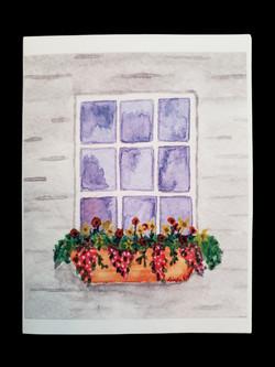 Window Box (1)