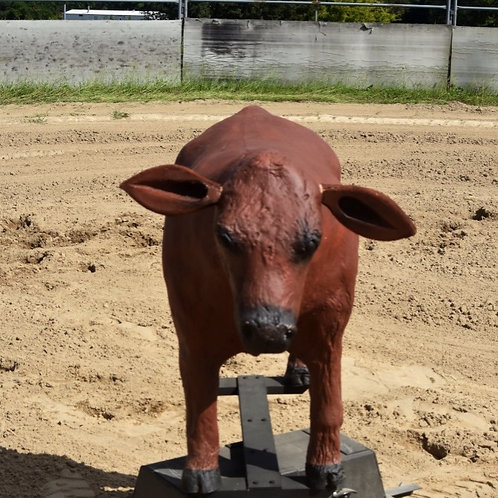 Life-Size Detachable Cow