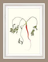 CAROTTE FANES + CADRE BLANC + FOND.jpg