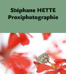 STEPHANE HETTE.png